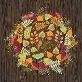 Autumn composition. Illustration Composition a wooden background. — Wektor stockowy