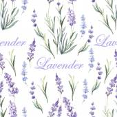 Watercolor lavender botanical pattern — Stock Vector