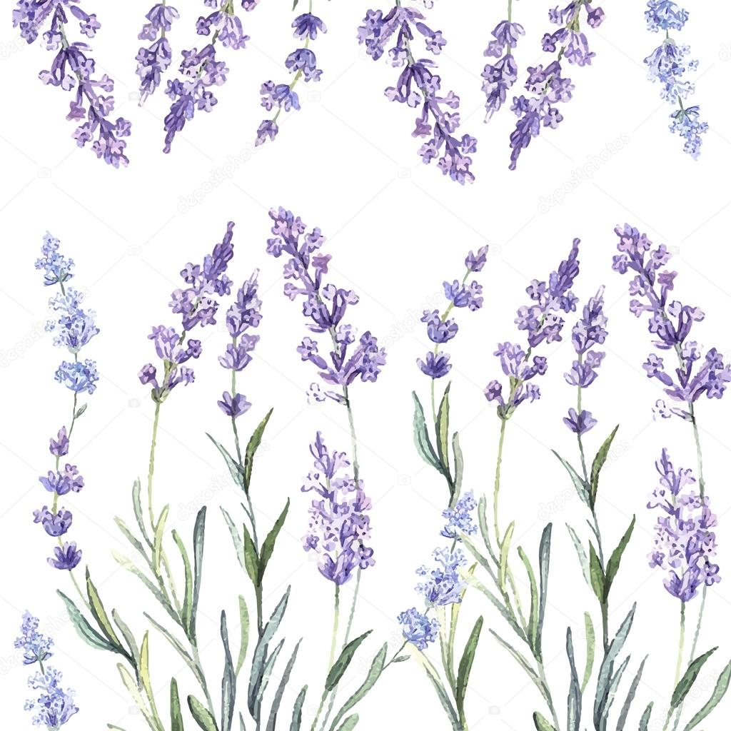 watercolor pattern with lavender � stock vector 169 annart