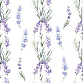 Watercolor lavender seamless — Vetorial Stock