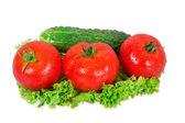 Three tomatoes and cucumber — Stock Photo