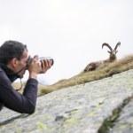 Wildlife Photographer — Stock Photo #59700907