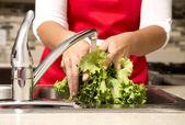 Mytí zeleniny — Stock fotografie