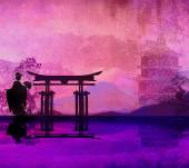 Geisha at sunset  — Fotografia Stock