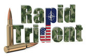 Multinational troops exercise Rapid Trident US NATO — Stock Photo