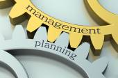 Management and Planning concept on the gearwheels — Stock Photo