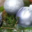 Silver Christmas ornaments in leaves — Stok fotoğraf #52672821