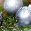 Silver Christmas ornaments in leaves — Stock Photo #52672821