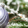 Silver Christmas ornaments in leaves — Stock Photo #52673043