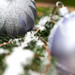 Silver Christmas ornaments in leaves — Stok fotoğraf #52673175