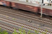 Fast moving train with red stripe — Stockfoto