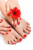 Woman with beautiful red manicured nails — Stock Photo