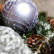 Silver Christmas ornaments in leaves — Stock Photo #55946867