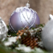 Silver Christmas ornaments in leaves — Stok fotoğraf #55946913