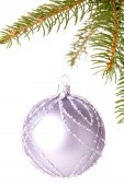 Christmas ball on branch of a fir tree — Stockfoto
