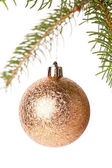 Christmas ball hanging from a branch of a fir tree — Foto de Stock