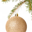 Christmas ball hanging on fir tree — Stock Photo #59406695