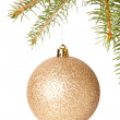 Christmas ball hanging on fir tree — Stock Photo #59406713