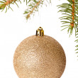 Christmas ball hanging on fir tree — Stock Photo #59406739