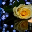 Rose and Small Lighted Candle — Stock Photo #73789505
