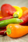 Colorful capsicum peppers — Stock Photo