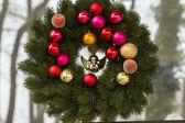 Hanging Christmas Wreath on Glass Window — Stock Photo