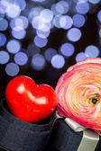 Red Heart and a Beautiful Flower — Stock Photo