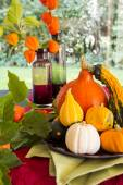 Colorful autumn or Thanksgiving background — Stock Photo