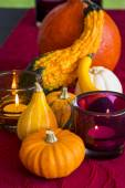 Thanksgiving party background — Stock Photo