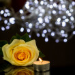 Pretty Rose, Lighted Candle — Stock Photo #73802255