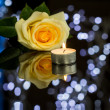 Pretty Rose, Lighted Candle — Stock Photo #73802279