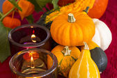 Burning candles with decorative pumpkins — Stock Photo