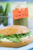 Healthy, homemade herb and vegetable sandwich — Stock Photo