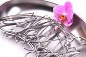 Orchid on surgical instruments — Stock Photo