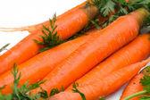 Fresh carrots — Photo