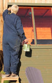 Painting a potting shed — Stock Photo
