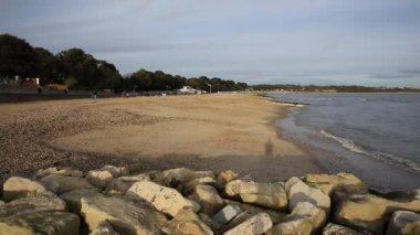 Mudeford beach near Christchurch Dorset England UK dog running away from camera — Stock Video