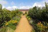 Grounds at Barrington Court near Ilminster Somerset England uk Tudor manor house — Stock Photo