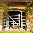 Very old wooden stable door hundreds of years old with red roses — Stock Photo #67640301