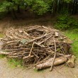 Replica Osprey nest built to model those found in trees — Stock Photo #69204631