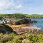 Outer beach Hope Cove South Devon England UK near Kingsbridge and Thurlstone — Stock Photo #76218831