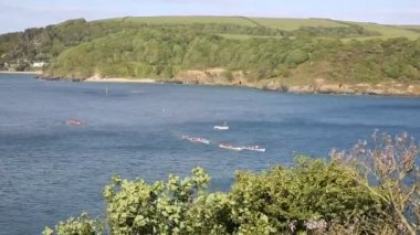 Pilot gig boat rowing and racing event at Salcombe Devon England UK on 31st May 2015 — Stock Video