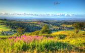 İngilizce kırsal görünümü Quantock Hills Somerset İngiltere İngiltere Hinkley noktası nükleer güç istasyonu ve bir yaz akşamı canlı renkli HDR Bristol kanalı doğru sahilden doğru tarihlerde bir resim — Stok fotoğraf