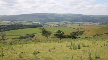 View to Dunkery Hill the highest point on Exmoor Somerset England UK PAN — Stock Video