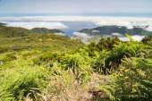 Plateau Paul da Serra in Madeira island — Stock Photo