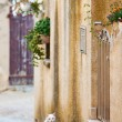 Street with cat in French Provence — Stock Photo #56310317
