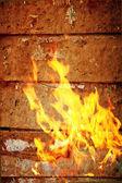 Beautiful fire flames — Stock Photo