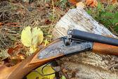 A wooden retro shotgun in autumn — Stock Photo