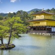 View of Kinkaku-ji (Temple of the Golden Pavilion) in Kyoto, Japan — Stock Photo #66547531