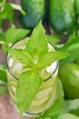 Lemonade with fresh cucumber, lime and mint in glass — Stock Photo
